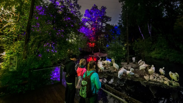 Tierpark Hellabrunn bei Nacht