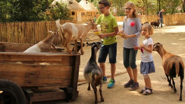 Erlebnis-Zoo Hannover - Sambesi Kraal