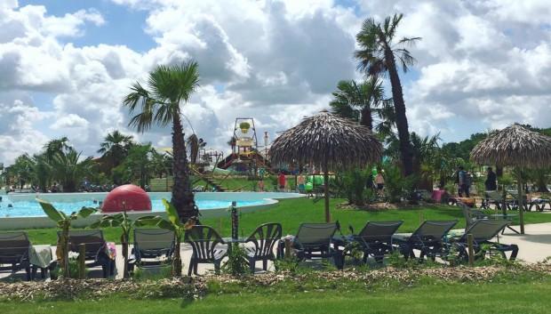 Wiese Palmen O`Gliss Park