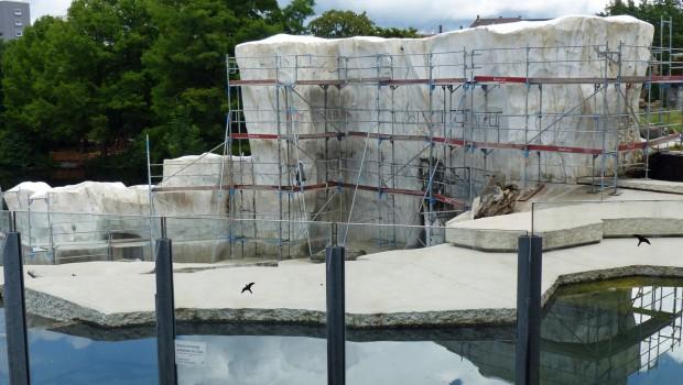 Zoo Karlsruhe: Letzte Arbeiten an den Eisfelsen in der Eisbären-Außenanlage (Foto: Zoo Karlsruhe)