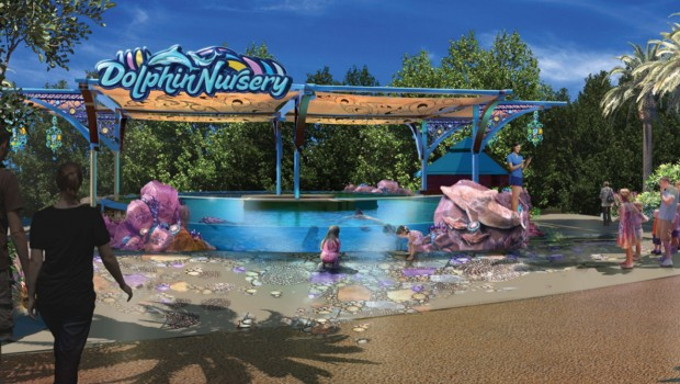 Dolphin Nursery - SeaWorld Orlando - Artwork