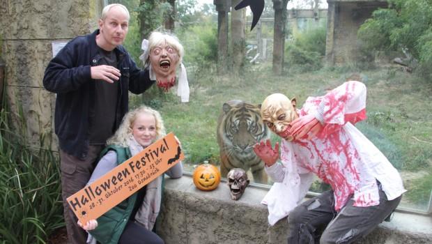 Halloween Festival 2016 Zoo Osnabrück