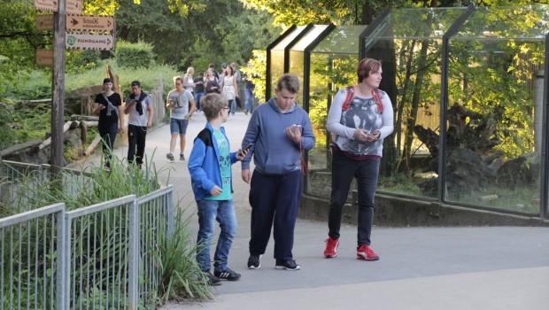Pokémon-Weekend im Zoo Osnabrück - Teilnehmer