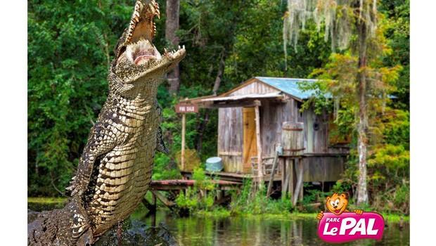 """""""Alligators Park"""" - Le Pal"""