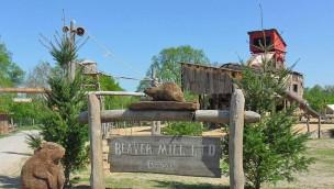 """Wildpark Frankenhof eröffnet """"Canadian Beaver Hill"""" mit höchster Steilrutsche Deutschlands"""