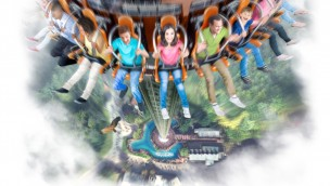 Dollywood Free-Fall-Tower Drop Line - Artwork