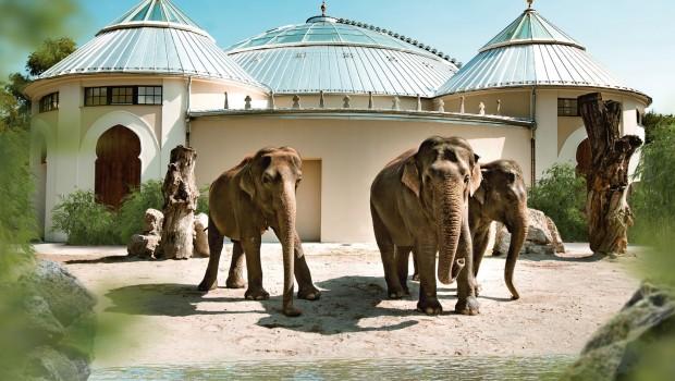 Elefantenhaus im Tierpark Hellabrunn