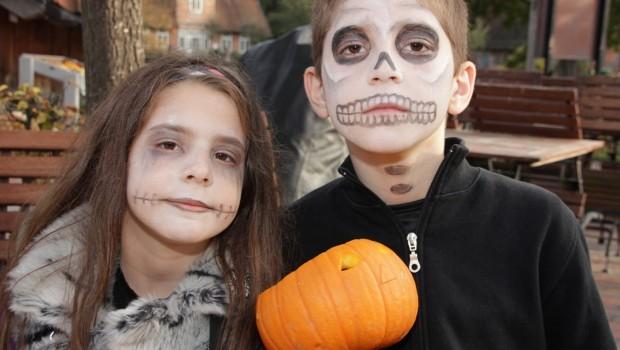 Halloween Festevil Aussie World