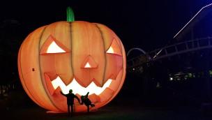Halloween 2016 im Heide Park Resort in Zahlen: 120 Live-Erschrecker, zehntausende Kürbisse und über 500 Lichter