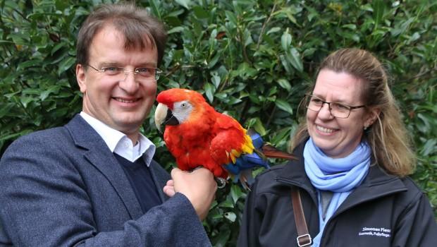 Rubin im Zoo Karlsruhe - Ankunft