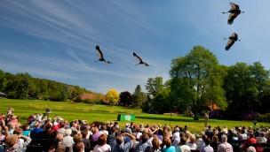 Weltvogelpark Walsrode freut sich über Besucherplus: Goldener Herbst sorgt 2016 für Rekordzahlen