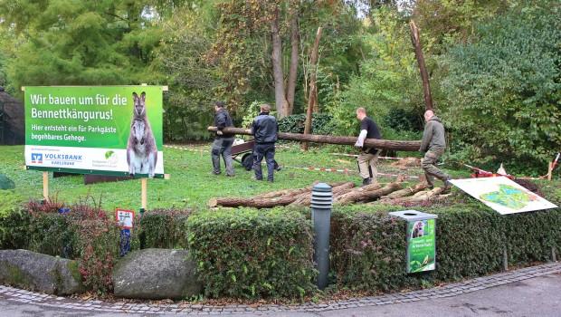 Zoo Karlsruhe - Erweiterung des Känguru-Gehege 2016