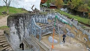 Schnee-Eulen im Zoo Karlsruhe bekommen bis Ende 2016 neue Voliere