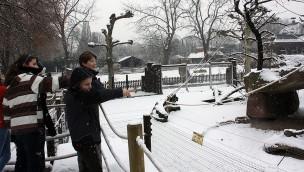 Zooschule Heidelberg - Winter