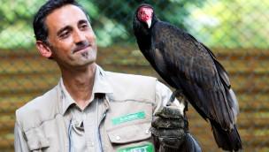 Comeback im Weltvogelpark Walsrode: Vogeltrainer German Alonso kehrt zurück