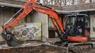 Allwetterzoo Münster: Leoparden-Anlage kann 2017 dank 300.000 Euro-Spende saniert werden