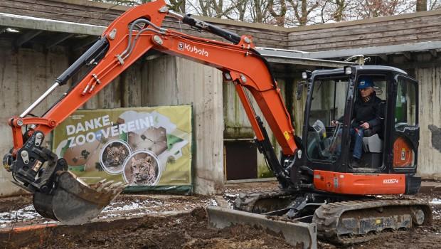 Sanierung der Leoparden-Anlage im Allwetterzoo Münster