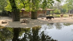 Zoo Krefeld Südamerika-Anlage