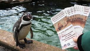 """Zoo Osnabrück bietet besonderes Führungsangebot mit Blick hinter die Kulissen für Besucher: """"Zoo zum halben Preis"""" am 1. und 2. April 2017"""