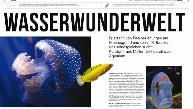 Tierpark Hellabrunn Magazin