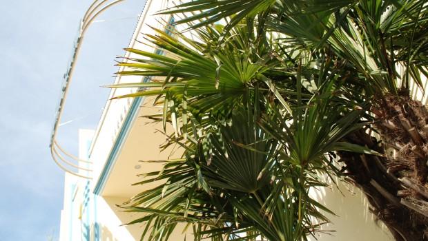Palmen am Eingangsportal des Movie Parks