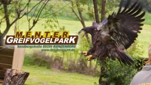 Greifvogelpark Menter: Eintritt mit Ticket-Angebot für mehrere Personen günstiger
