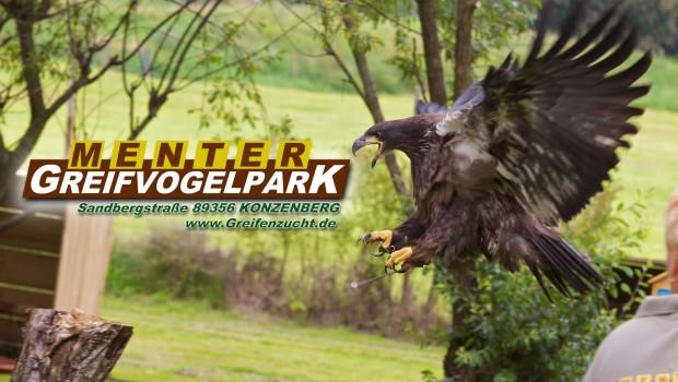 Greifvogelpark Menter
