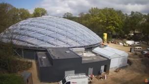 Burgers' Zoo neue Mangrove von oben: Webcam zeigt Bau aus der Vogelperspektive