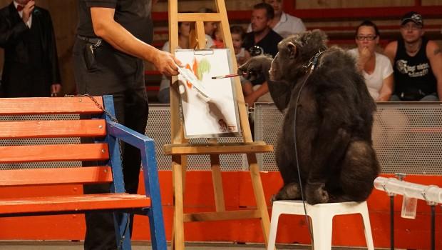 Schimpansen-Show Schwaben-Park Sina malen