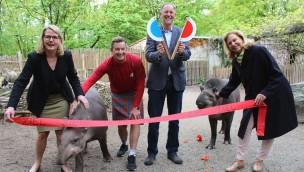 Zoo-Lauf in Osnabrück 2017 am 17. Juni zugunsten von Kinderprojekten