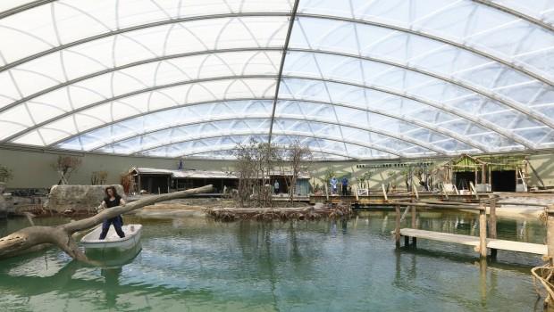 Burgers' Zoo Mangrove Überdacht