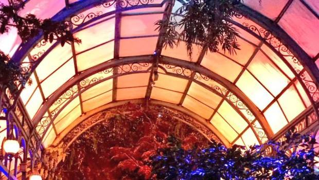 """Botanicum in """"Symbolica"""" in Efteling"""