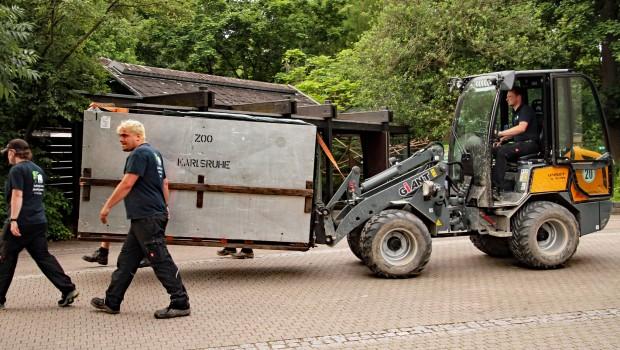 Fluggpferd Umzug Zoo Karlsruhe nach Tschechien
