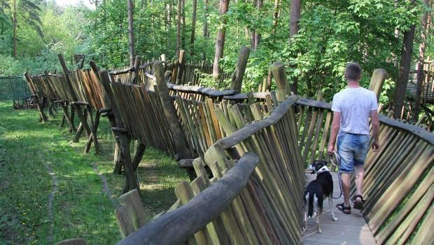 Güstrower Wildpark Hunde Holzsteg