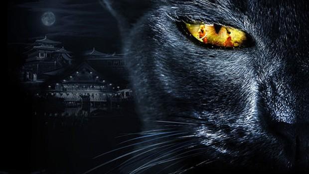 Legend of the Demon Cat Moonstone Films