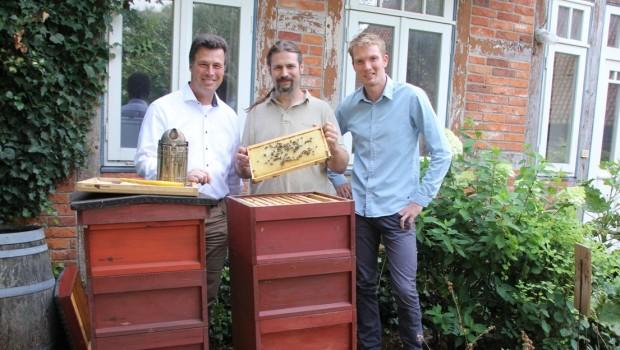 Erlebnis-Zoo Hannover Bienenkästen