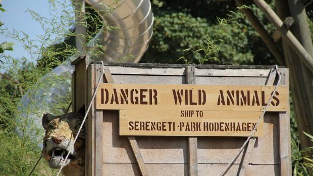 Serengeti-Park Radio Brocken Ferienaktion