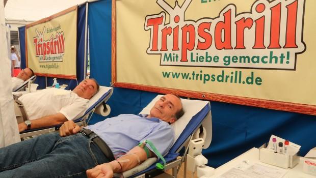Tripsdrill Blutspende