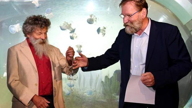 Zoo Rostock Quallenforschung Kooperation