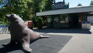 Ende einer Show-Ära: Hansa-Park verabschiedet sich von Seelöwen