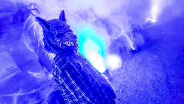 ZOOM Erlebniswelt Halloween