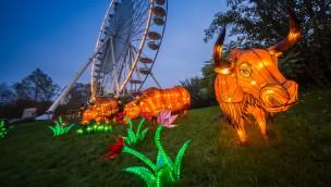 """Startschuss für """"Lichter-Safari"""" 2017 im Serengeti-Park: Über 60 Lichtfiguren erstrahlen im Herbst"""