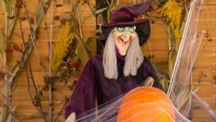 Traumland auf der Bärenhöhle 2017 mit schaurig-schönem Kinder-Halloween: Verrückte Hexen erobern den Freizeitpark
