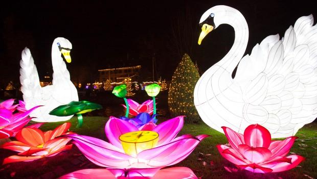 Chinesisches Lichterfest im Europa-Park