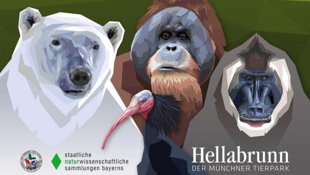 Tierpark Hellabrunn Ausstellung Hellabrunn trifft ZSM