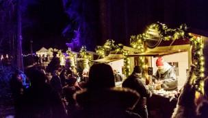 Kolmården öffnet erneut im Winter 2017 und erweitert Weihnachts-Angebot
