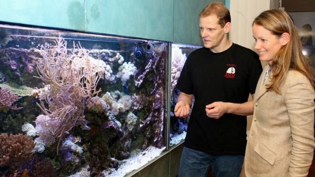 Zoo Osnabrück Tetra Aquarium Neuerungen