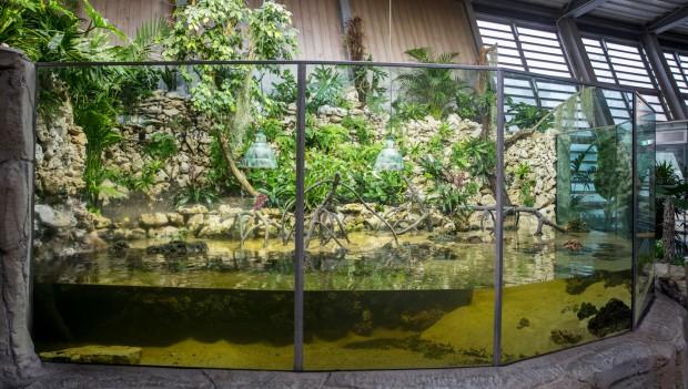 Tierpark Hellabrunn: Mangrovenbecken von außen