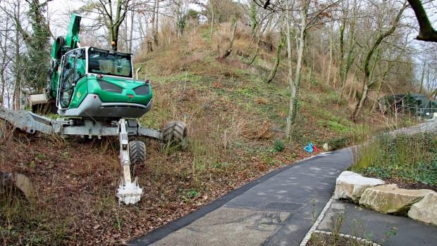 Zoo Karlsruhe Luchse neues Gehege Baustelle