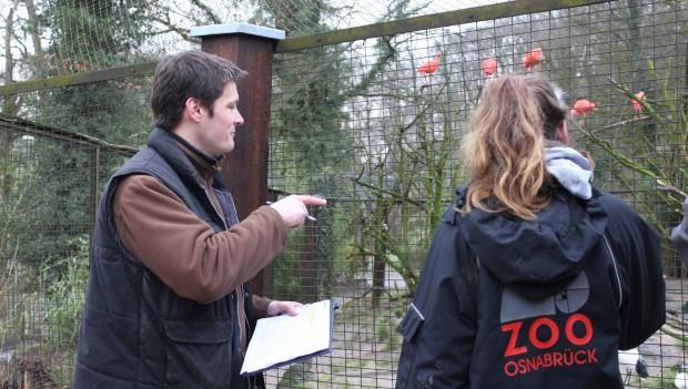 Zoo Osnabrück bei der tierischen Inventur 20118: Die Seehunde: Elefant Minh Tan: Die roten Sichler